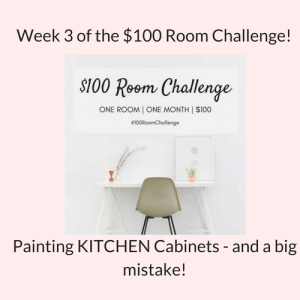 Thrifty Kitchen Makeover – Week 3 (And a Big Mistake!)