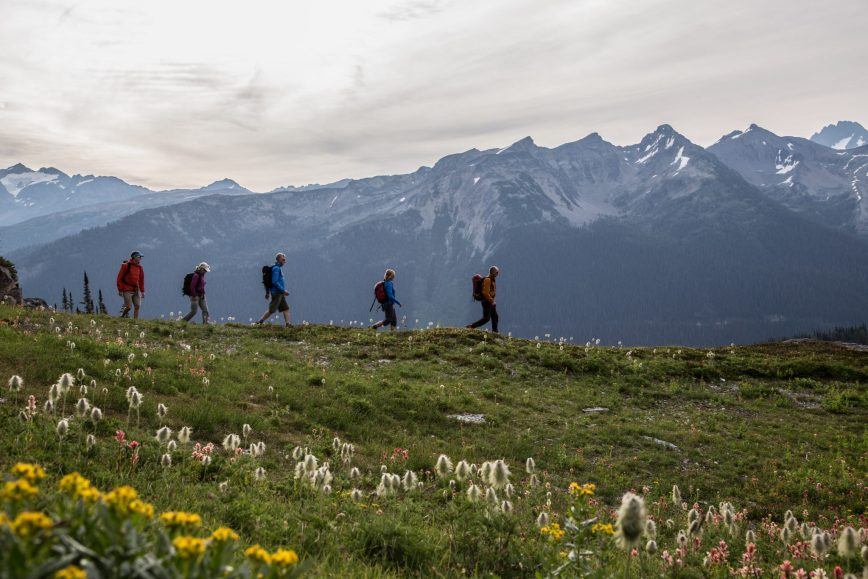 hiking-with-some-flowers-john-entwistle