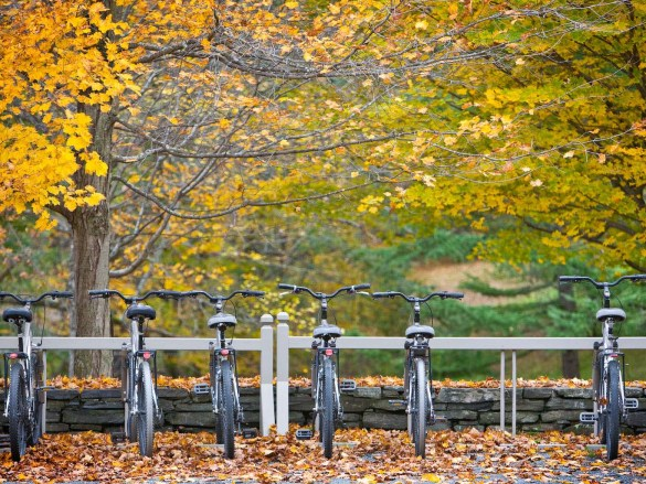 Twin-Farms-Bicycles
