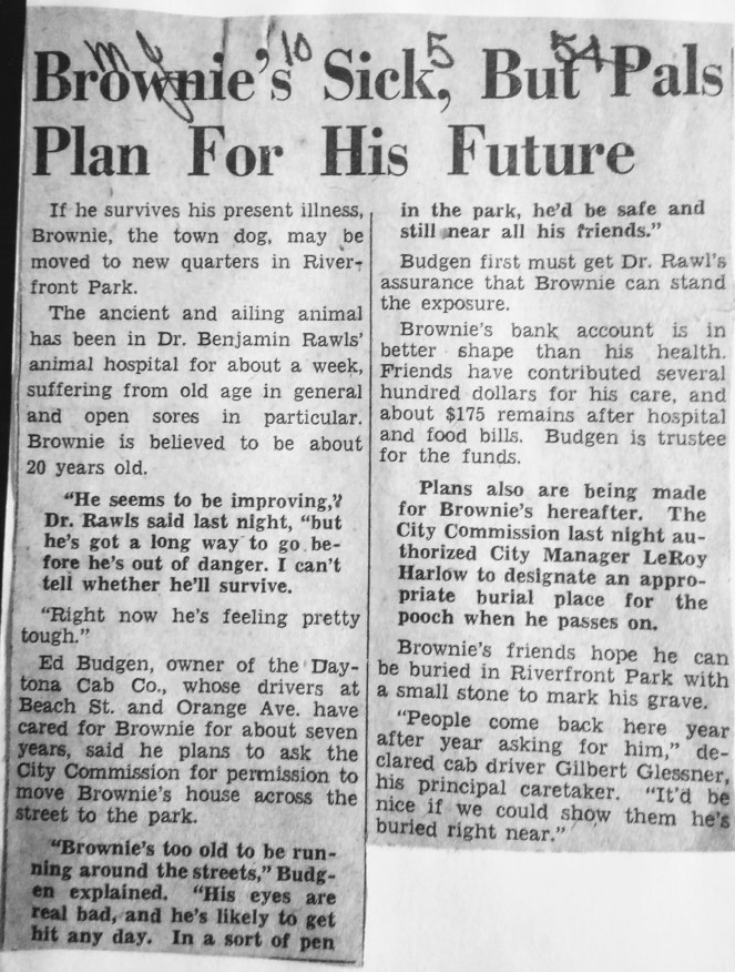 October 5, 1954: Brownie's Sick, but Pals Plan for his Future