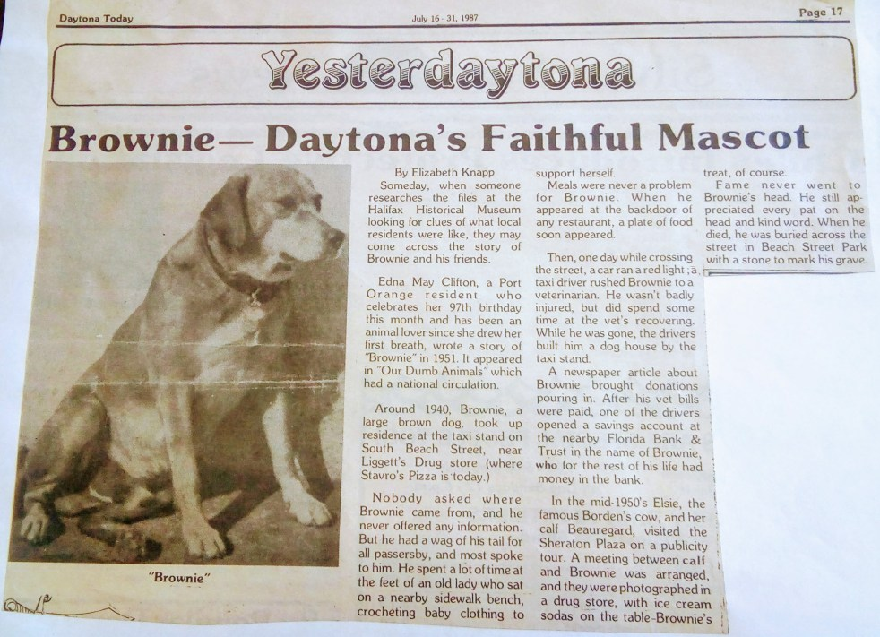 Brownie was featured in Daytona Today July 16-31, 1987