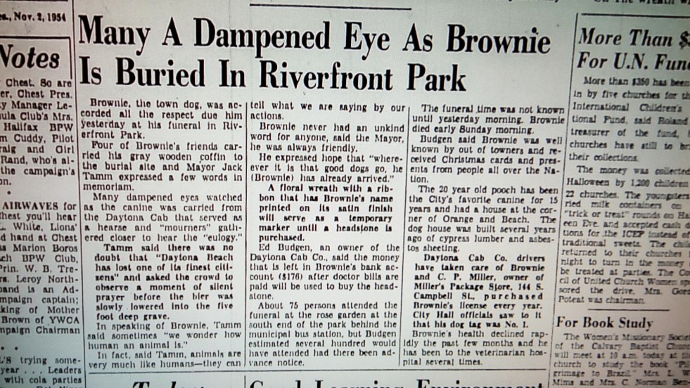 November 2, 1954: Many a Dampened eye as Brownie is buried in Riverfront Park.