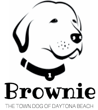 BROWNIE LOGO2