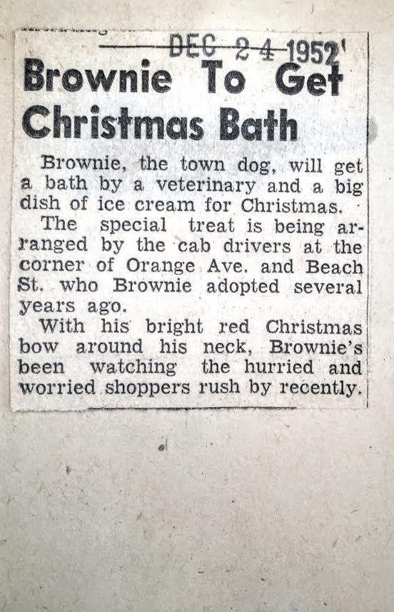 Brownie gets Christmas Bath