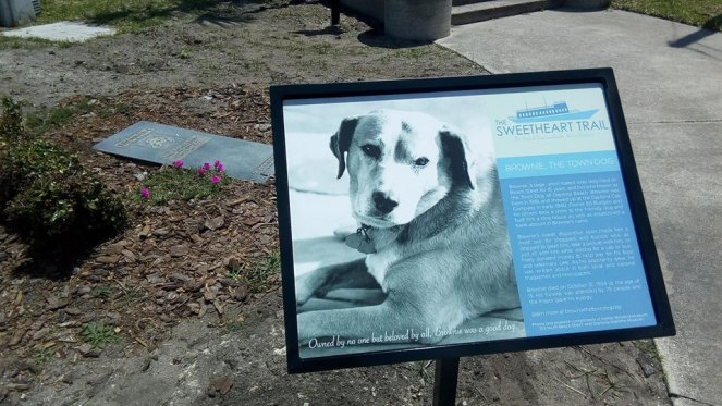 Brownie the town dog historic marker Daytona Beach, Florida