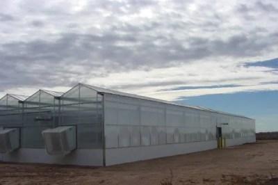 greenhouse_texas5