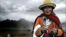 marcha pueblos originarios