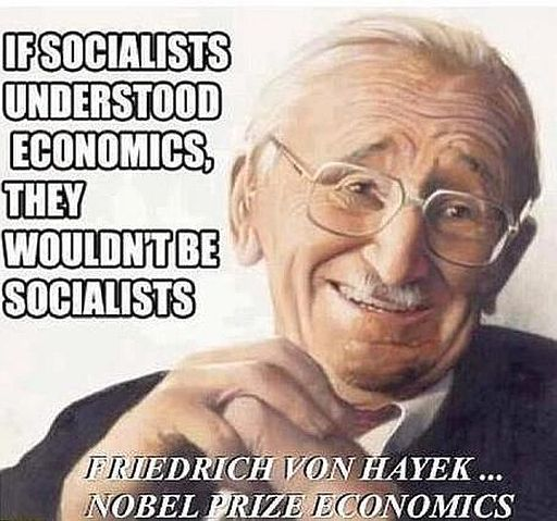 Socialists Hayek 512