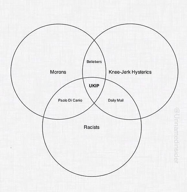 UKIP venn diagram 650