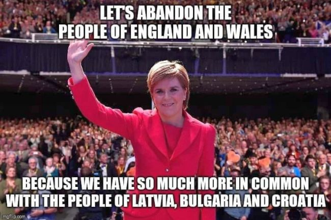 It Takes a Special Sort of Stupid to Vote SNP