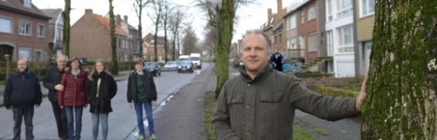 Provincie vernietigt kapvergunning Koolkerkse Steenweg