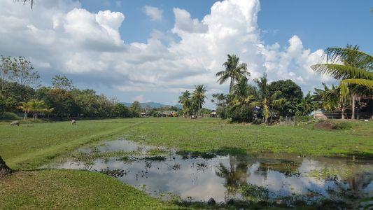 Rice Museum Langkawi