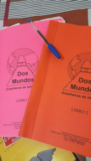 Dos Mundos Spanish School