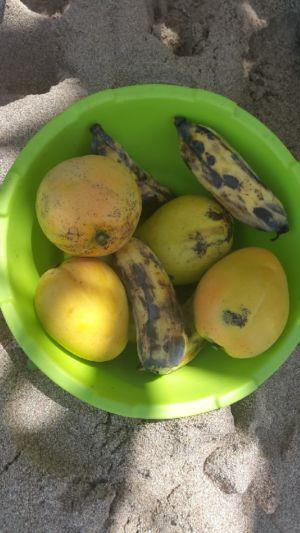 Fresh fruit!