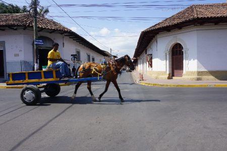 Paard en wagen Granada Nicaragua