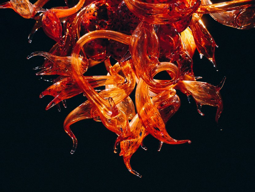 chihuly 46