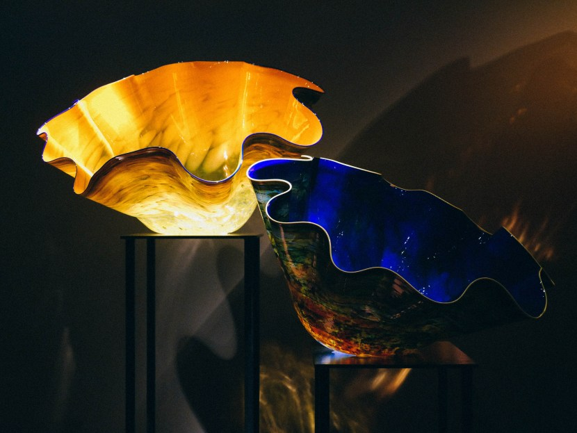 chihuly 48