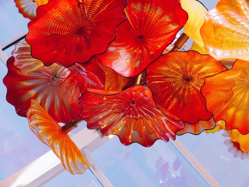 chihuly 53