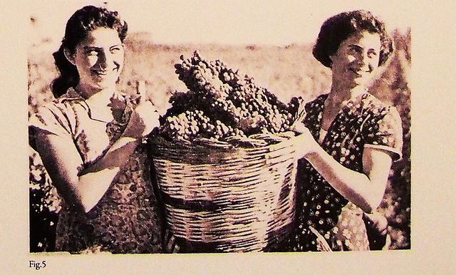 Donna e lavoro. Tra vecchi mestieri e nuove professioni - Mostra fotografica 2^ parte