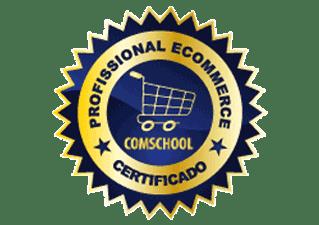 Gerente de E-Commerce e Marketing Digital