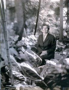 A Gardening Life: Kim Tripp 1