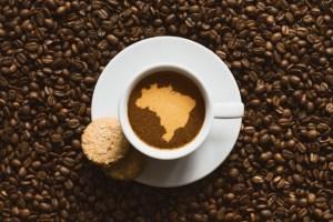 1lb-Fresh-Roasted-Gourmet-Brazil-Cerrado-Coffee-Calusa-Coffee-Roasters-33