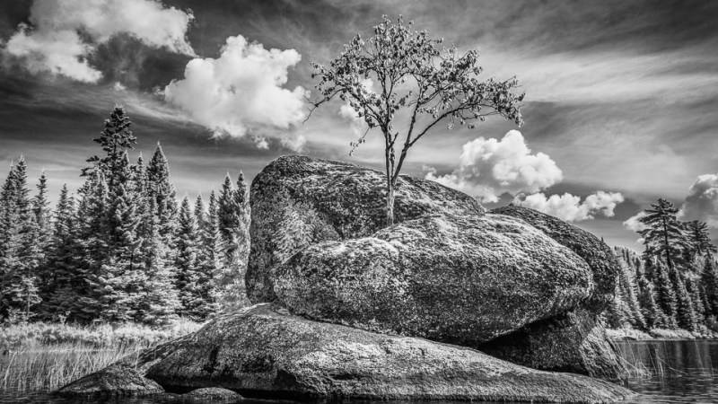 Infrared Photography in Canoe Country