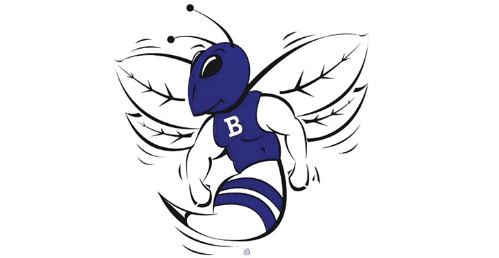 High School Hornet Logo