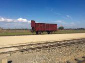 Cattle wagon