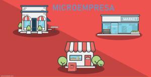 Cuales son las obligaciones de una Microempresa