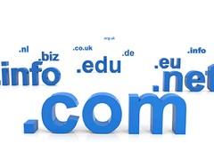 domains_control