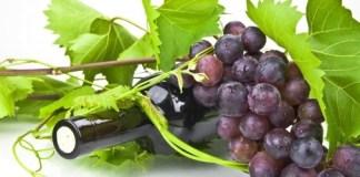 Bere in modo consapevole è una buona abitudine sempre più diffusa anche nel bresciano - www.bsnews.it