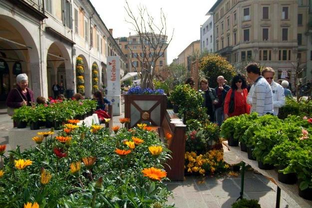 Un'immagine di Corso Zanardelli a Brescia, trasformato in un prato fiorito grazie all'iniziativa Brixia Florum