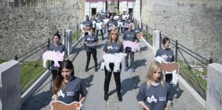 L'iniziativa degli animalisti al Castello di Brescia, www.bsnews.it