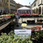 L'edizione 2017 di Brixia Florum, in Corso Zanardelli a Brescia, foto di Enrica Recalcati, www.bsnews.it
