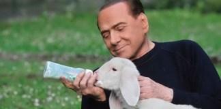 Berlusconi allatta un agnello, un frame del video realizzato dal fotografo bresciano Fabrizio Zanotti, www.bsnews.it