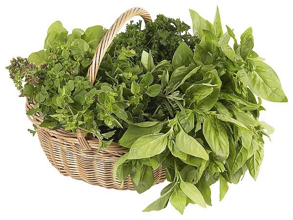 Un cesto contenente erbe aromatiche - www.bsnews.it