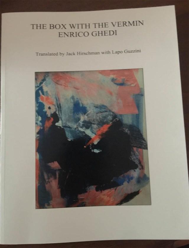 La Scatola con gli insetti, il libro dell'ex Timoria Enrico Ghedi, tradotto e pubblicato negli Usa