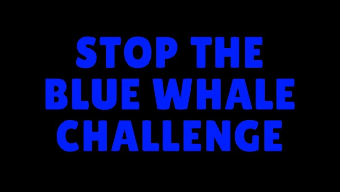 Stop Blue Whale