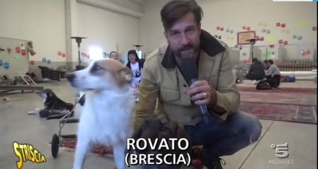 Striscia la Notizia, un'immagine del servizio dedicato a Casa Bau di Rovato, foto da YouTube