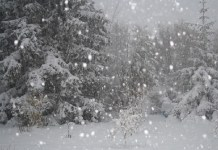 Prima neve anche sulla provincia di Brescia