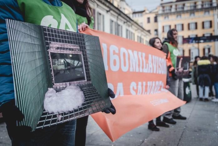 Animalisti in Corso Zanardelli per sensibilizzare le forze politiche sull'uccisione dei visoni, foto: Essere Animali