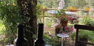 Un'immagine dell'Agriturismo del gusto di Toscolano Maderno, foto da Tripadvisor