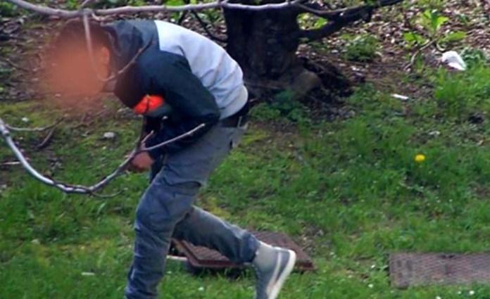 Spacciatore al parco, foto generica