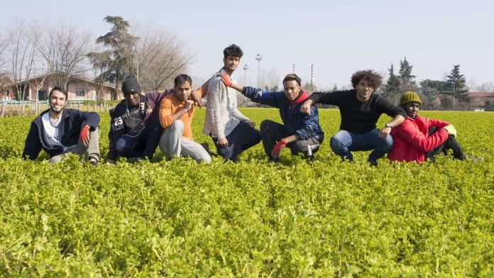 Richiedenti asilo nei campi a scuola di agraria, foto da ufficio stampa