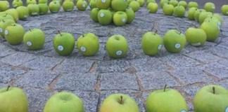 Le mele verdi apparse in città