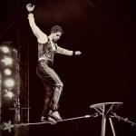 Il circo David Orfei arriva a Brescia