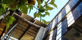 Limonaia la Malora Credit Leila Bonacossa (foto da ufficio stampa Visit Brescia)