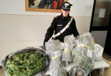 Sequestro marijuana - foto da Carabinieri