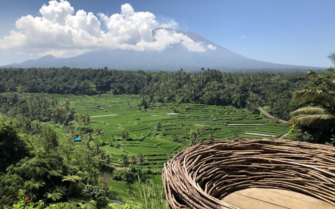 Volunteering and Vacationing in Bali :  Best of Both Worlds